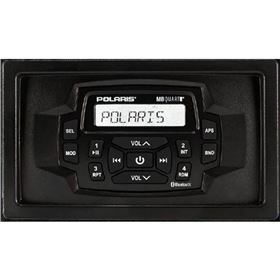 Polaris Dash Radio