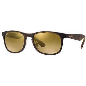 Ray-Ban RB4263 Polarized Sunglasses